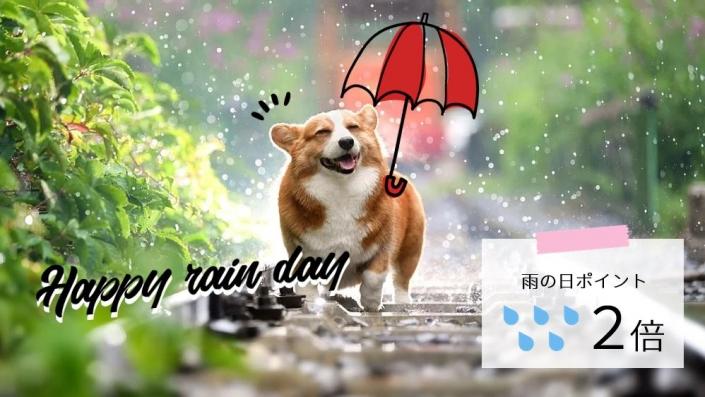 rainday_template